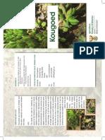 Kougoed Brochure