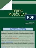 5. Tejido Muscular