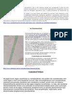 Cianobactérias - Micro Bio