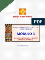 Curso Reiki Andino Modulo 3 - Junio 2014