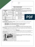 Guía Nómina Anatómica- 6to 2010 CHA