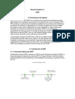 Resumen Capitulo 11 - OSPF