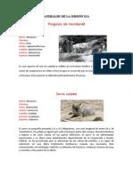 Animales de La Región Ica