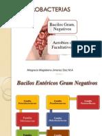 enterobacteriascursovirtualcorregido2012-120401082957-phpapp01