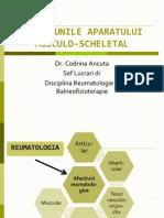 BFKT 1PoliartritaReumatoida CAncuta 2013