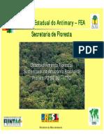 [Po]Desenvolvimento Florestal Sustentável Na Amazônia Brasileira (PDF) Carlos Ovidio Duarte Rocha