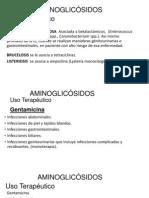 AMINOGLICÓSIDOS