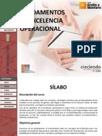 PDF Interactivo Fundamentos de Excelencia Operacional