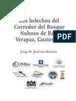 Helechos Del Bosque Nuboso de Baja Verapaz
