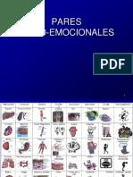 3. 5 PARES PSICOEMOCIONALES. COLUMNA Y PARES NUEVOS (1).ppt