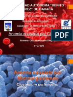 Anemia Por Clostridium
