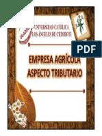 1.2 Empresa Agrícola Aspecto Tributario