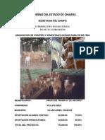 220967847-ovinos-proyecto