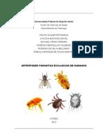Artrópodes Parasitas Exclusivos de Humanos
