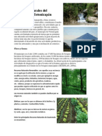 Recursos Naturales del Municipio de Totonicapán.docx