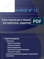 Puntos Seminario N_ 13