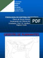 Aula Digest Ruminante