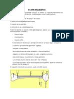 AYF_U2_RI_CLND.doc