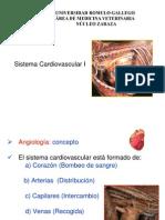 Sistema Cardiovascular.ppt