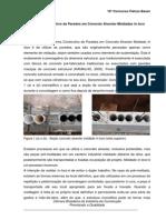 Sistema Construtivo de Paredes Em Concreto Alveolar Moldadas in Loco
