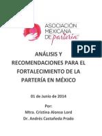 Analisis de La Situación de La Partería en Mexico-2014