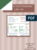 lab report 11