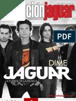 Evolucion Jaguar 012