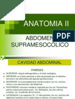 Abdomen Supramesocólico (Anatomia)