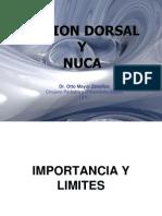 Region Dorsal y Nuca