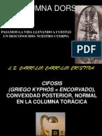 Clase 3 c.torácica