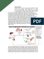 Sistem Renin Angiotensin