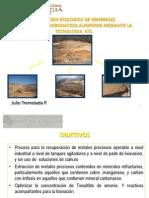 Lixiviacion Ecologica de Minerales de Cobre Oro Mediante ATS