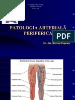 PATOLOGIE ARTERIALA (1)