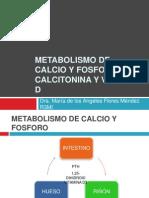 Metabolismo de Calcio y Fosforo, Pth-calcitonina y