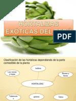 Hortalizas Exóticas Del Perú