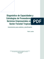 Diagnostico de CapacidadesCuadro[1]