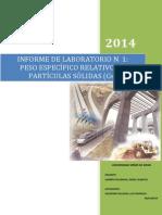 INFORME N°1 - PESO ESPECIF. RELAT. DE PARTICULAS SOLIDAS - SAAVEDRA SALAZAR