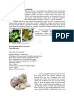 obat antiplatelet
