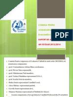 Raport CEAC Sem I 2014