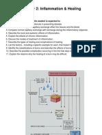 Pathophysiology Ch 02 Inflammation-V2