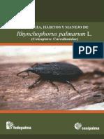 Biologia, Habitos y Manejo de Rhynchophorus Palmarum L.