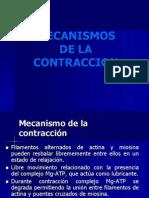 Clase6B- Mecanismos de La Contracción