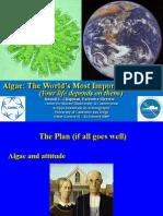 Algae Lecture v 1