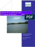 CalidadAguaMetapan2010.pdf