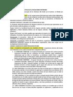Guia Derecho Internacional Publico