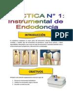 Informe de Endodoncia - Carli