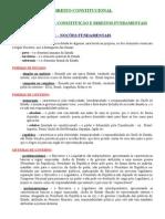 Direito Constitucional - Teoria Geral da Constituição e Direitos Fundamentais.doc