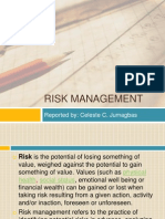 Risk Management Philippine Setting