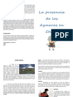 Diptico Aymara