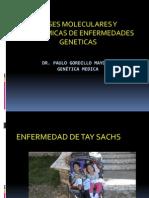 Bases Moleculares y Bioquimicas de Enfermedades Geneticas 2013